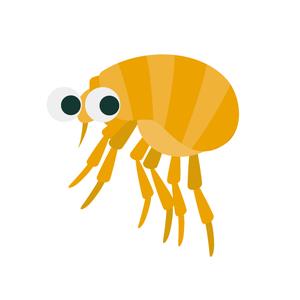 ノミは刺される痒み以外にも、アレルギーの原因にもなります!